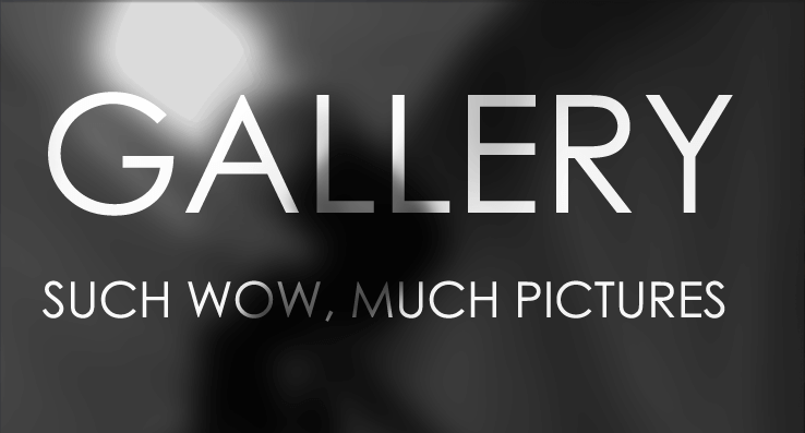 GALLERY - Such wow, much pictures